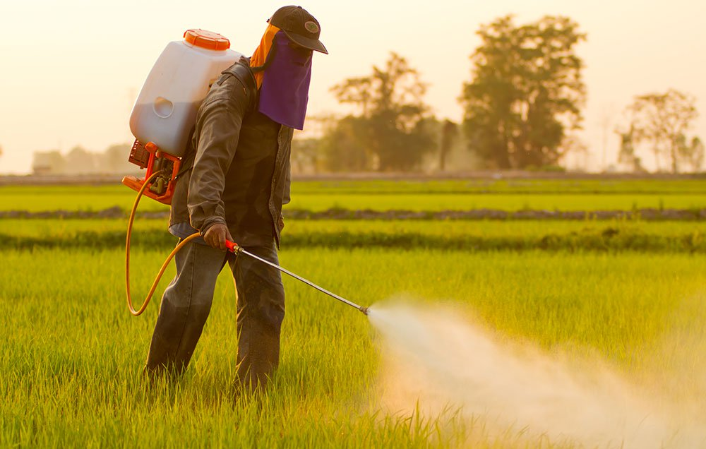 pesticide leads to infertility
